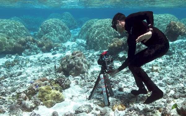 Ved Chirayath prend en photo les récifs coralliens sous l'eau, à l'aide d'un appareil à 360°. © Dan Griffin, Université Stanford