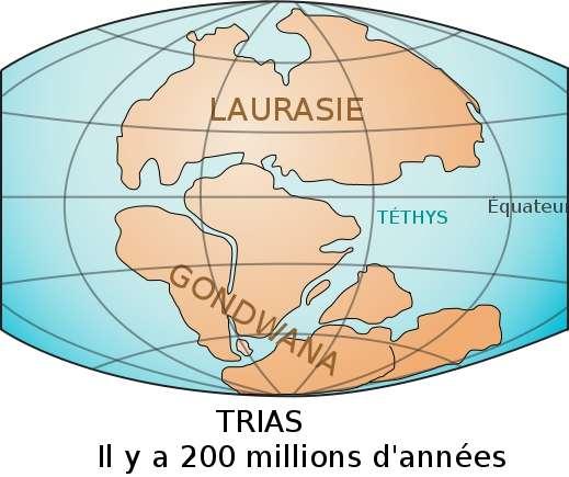Le supercontinent Gondwana se serait formé voici 600 millions d'années. Il a été nommé ainsi par le géologue Eduard Suess à partir du nom d'une région indienne, le Gondwâna, où des traces de son existence persistent encore à ce jour. Il est étudié dans le cadre d'études paléogéographiques. © Benoît Rochon, Wikimedia Commons, cc by sa 3.0