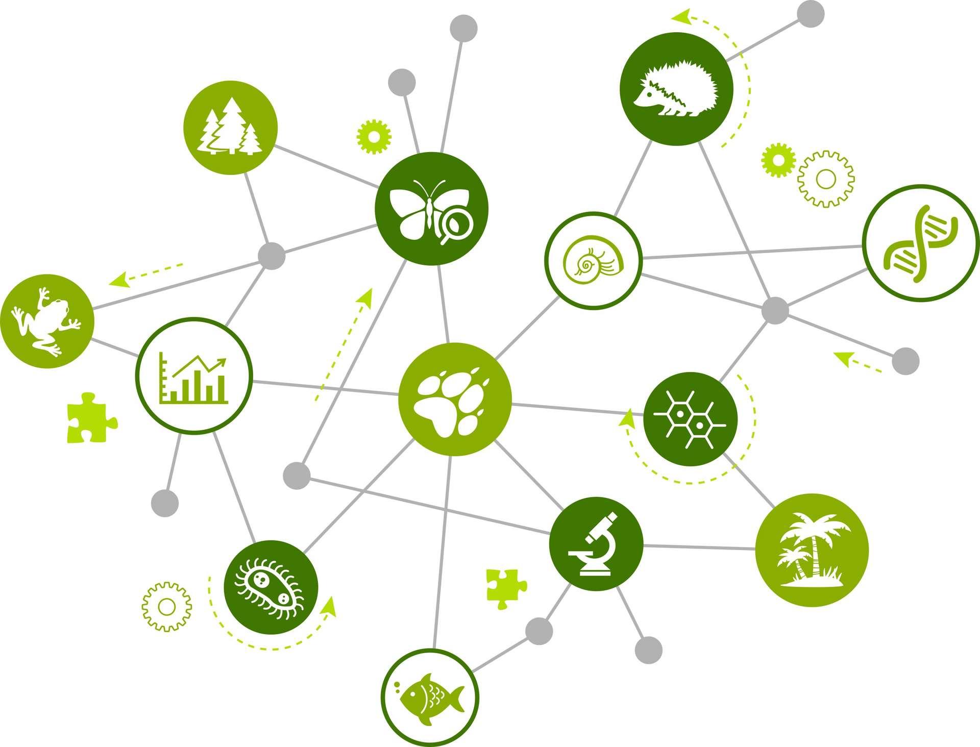 Avec son application Earth Challenge 2020, le réseau Earth Day souhaite lancer le plus grand mouvement de science citoyenne au monde. © J-mel, Adobe Stock