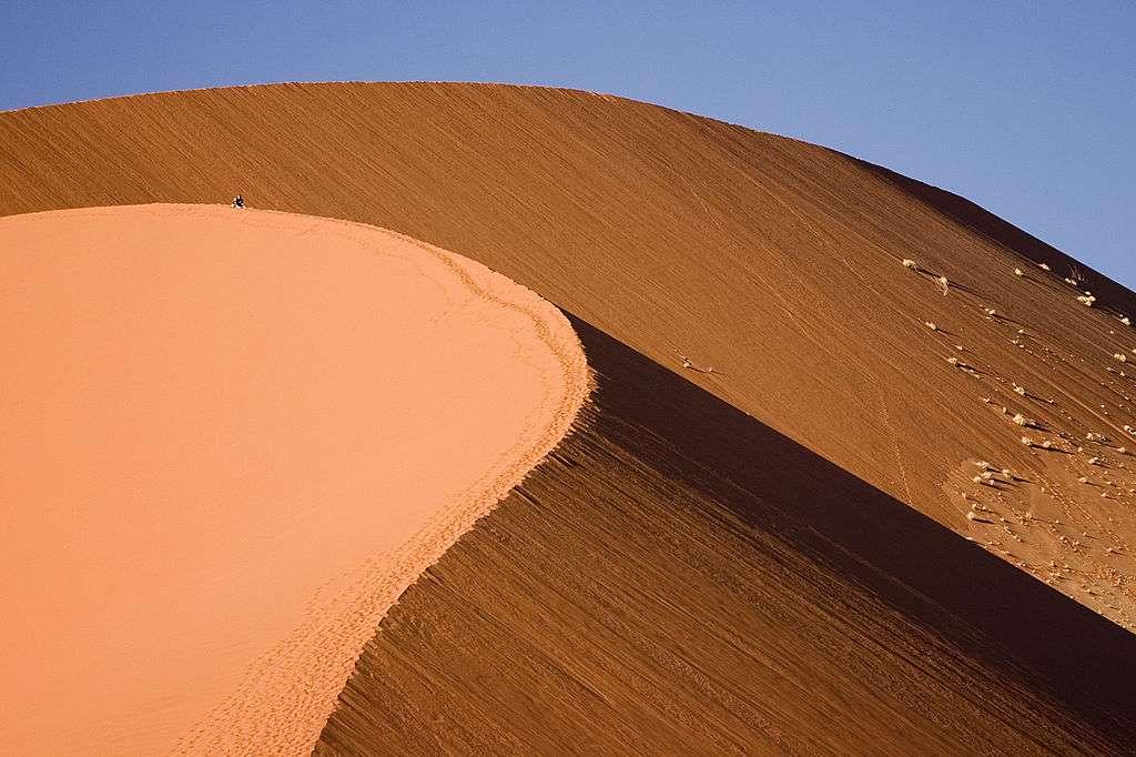 Au cours de son voyage de cent jours en Namibie, Claire König a croisé de nombreuses dunes comme celle-ci au sein de la région de Sossusvlei, dans le parc national de Namib-Naukluft. © Luca Galuzzi, Wikimedia Commons, cc by sa 2.5