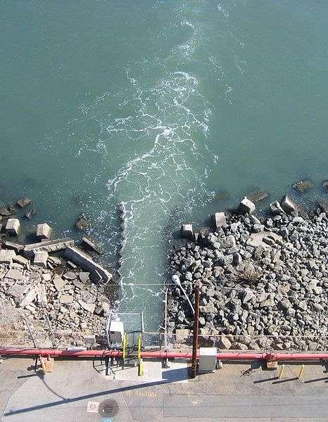 Rejet d'eau chaude d'une centrale électrique dans la baie de San Francisco. © Dragons Flight, Wikimédia GFDL 1.2