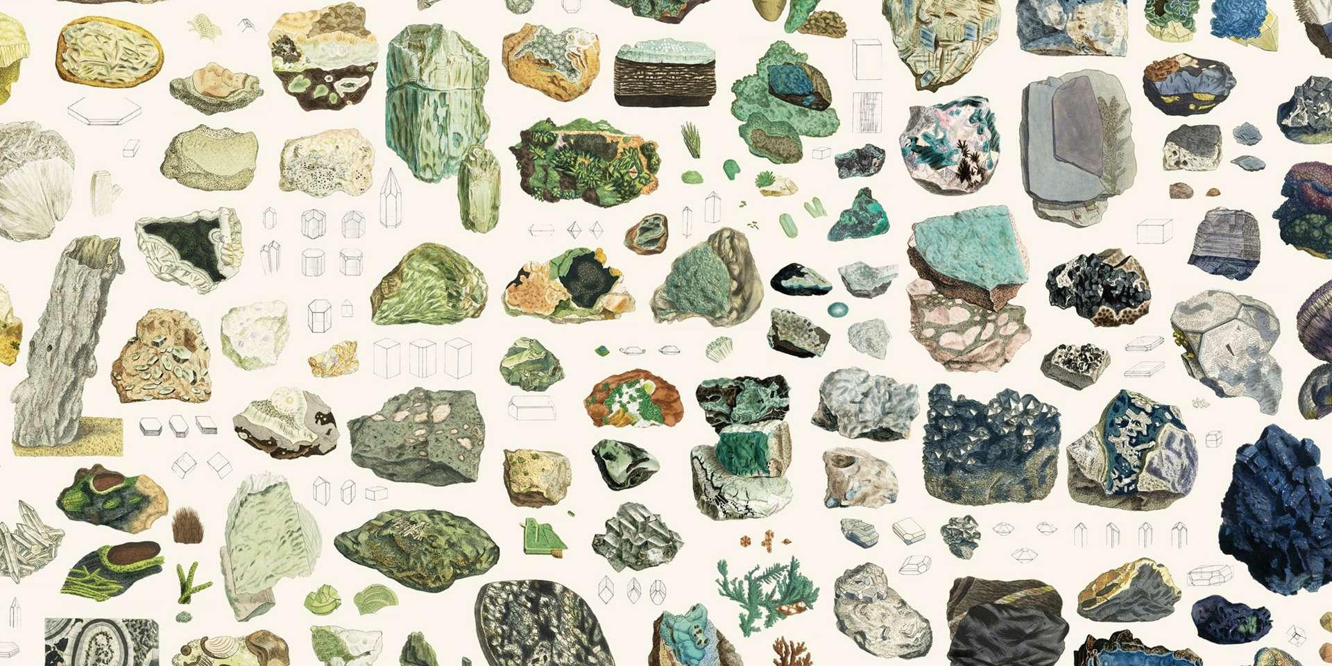 Amoureux des minéraux et mordus d'illustrations scientifiques, ce site est fait pour vous ! © Nicholas Rougeux