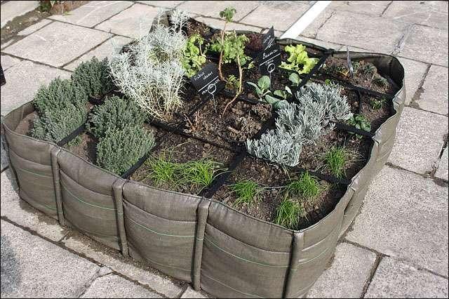 Végétalisation d'une terrasse. Crédit : Michel Caron