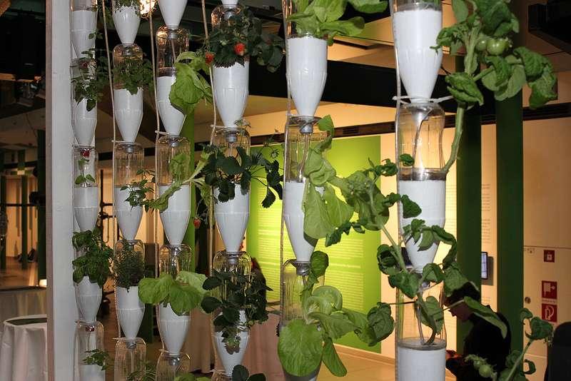 Les installations hydroponiques verticales ont été lancées par Britta Riley, une designer et artiste américaine vivant à New York qui souhaitait tout simplement renouer avec la nature. Pour plus de renseignements ou partager votre expérience, rendez-vous sur le site officiel du projet participatif Our.windowfarms.org. © Ars Electronica, Flickr, cc by nc nd 2.0