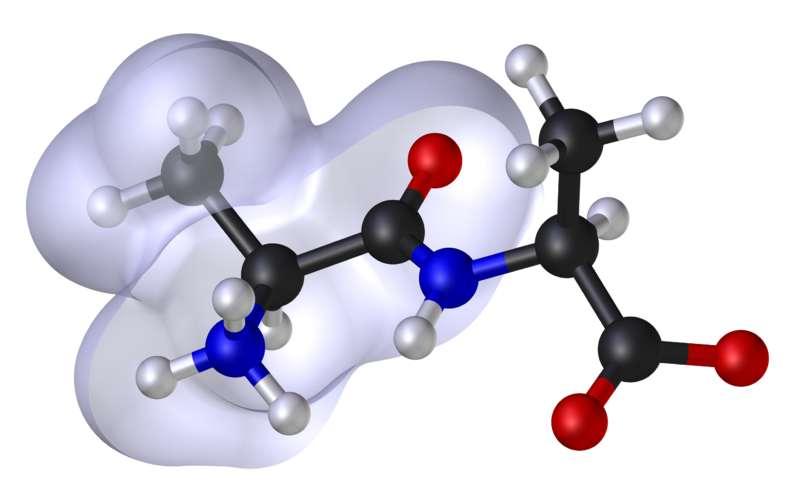 A gauche, l'enveloppe grise correspond à la région lipophile (hydrophobe) de la molécule. © Dhatfield et Edboas, Wikimédia CC by-sa 3.0