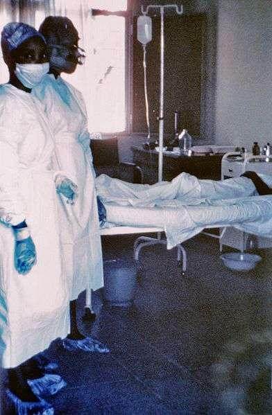La fièvre hémorragique à Ébola est une maladie souvent mortelle, causée par l'Ébolavirus. © DR