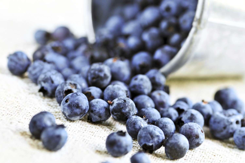 Les flavonoïdes présents par exemple dans les myrtilles permettraient de lutter contre les troubles de l'érection. © Elena Elisseeva, Shutterstock.com