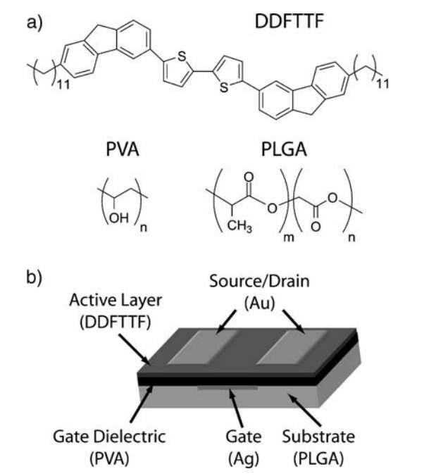 Schéma du transistor organique expérimental mis au point par l'équipe de Zhenan Bao. © University of Standford