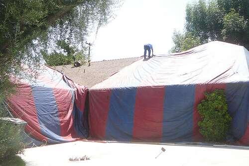 Aux Etats-Unis, une maison envahie par les termites est prête à recevoir un traitement par fumigation. © pinkiesblues / Flickr - Licence Creative Common (by-nc-sa 2.0)