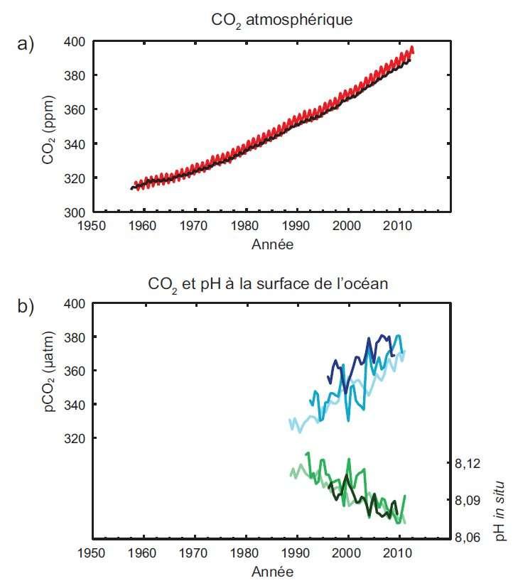 Différents indicateurs observés décrivent les changements affectant le cycle du carbone global : a) mesures des concentrations atmosphériques de dioxyde de carbone (CO2) effectuées à Hawaï (en rouge) et au pôle Sud (en noir) depuis 1958 ; b) mesures de la pression partielle du CO2 dissous à la surface de l'océan (courbes en bleu) et mesures de l'acidité de l'eau de mer, exprimée par le pH, effectuées dans trois stations de l'océan Atlantique (courbes en vert). © Giec
