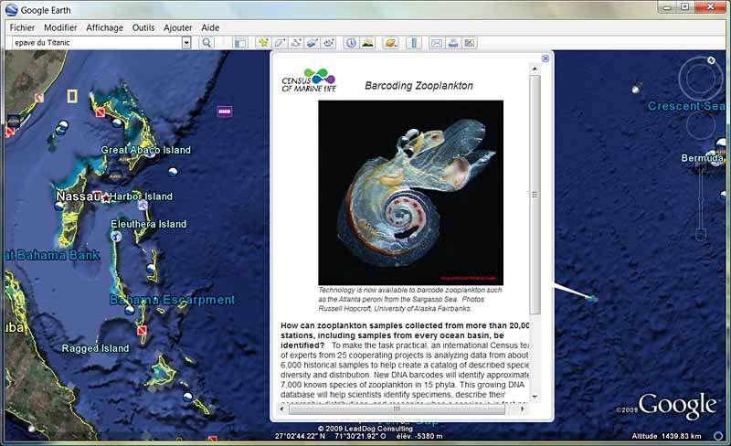 Copie d'écran Google Earth Ocean. Crédit Google