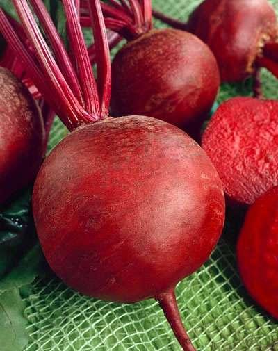 Les betteraves rouges se consomment pour leurs racines. © www.genericseeds.com