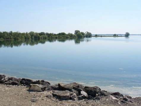 Au lac du Der, la LPO suit la fin de la migration d'automne