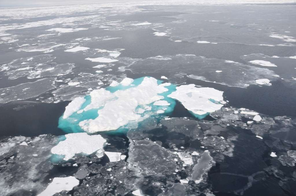 En septembre 2014, l'extension de la banquise arctique était à l'un de ses plus bas niveaux depuis les premières observations par satellite, en 1979. © NOAA