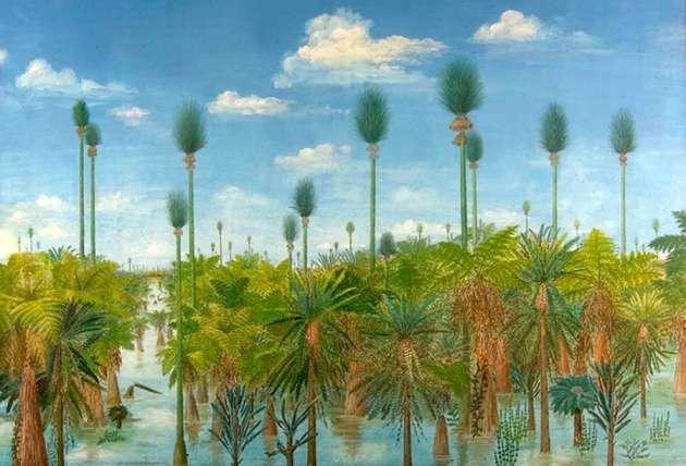 Un artiste a représenté à sa manière la forêt conservée depuis 300 millions d'années à partir des fossiles découverts. Cette forêt devait être favorable à la formation de tourbes puisque la région actuelle contient de grandes quantités de charbon. © Pnas