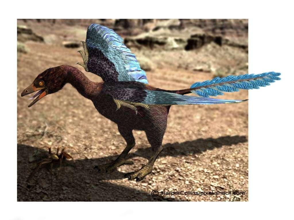 Archeopteryx. © Jon Hugues