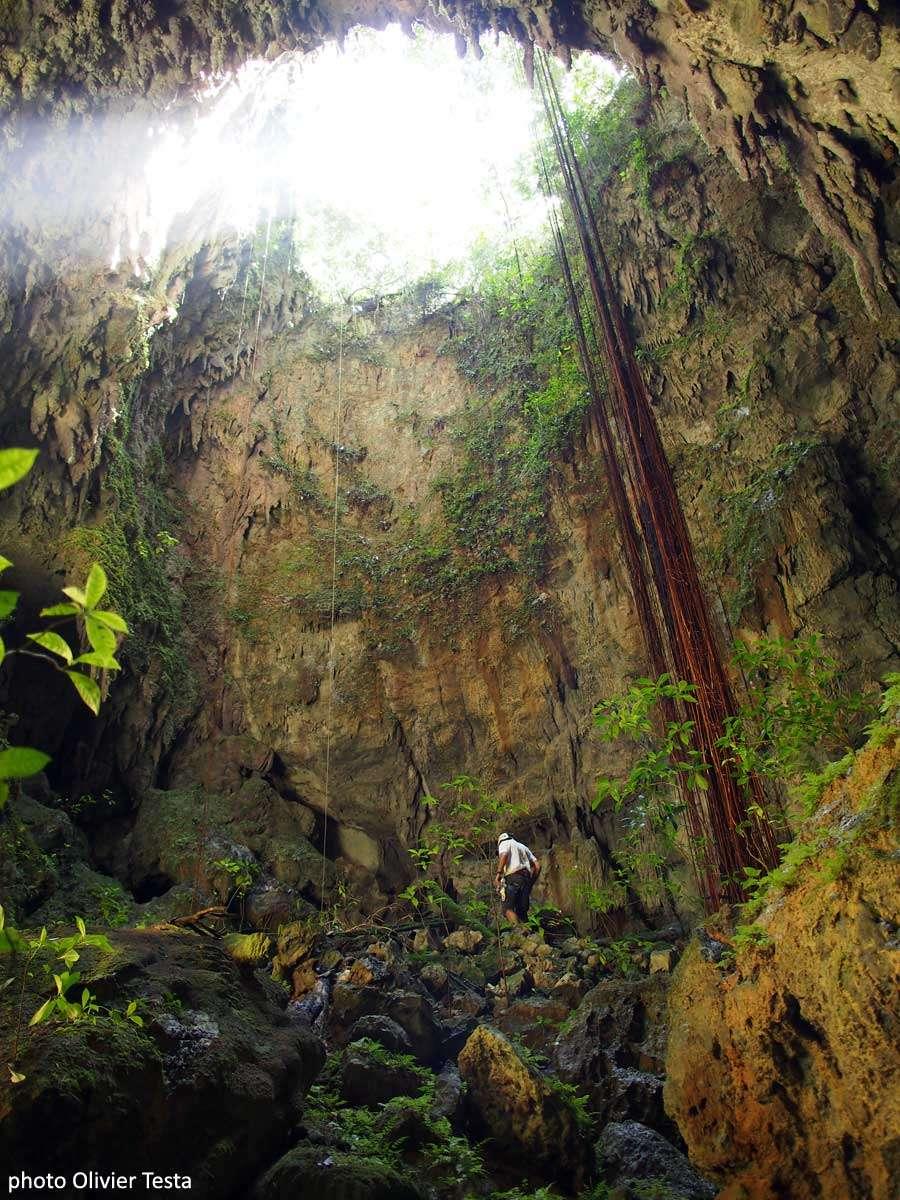 Pascal Orchampt découvre le gouffre Perdu, un aven borgne de 30 m de profondeur, avec des racines qui tombent du sommet. © Olivier Testa