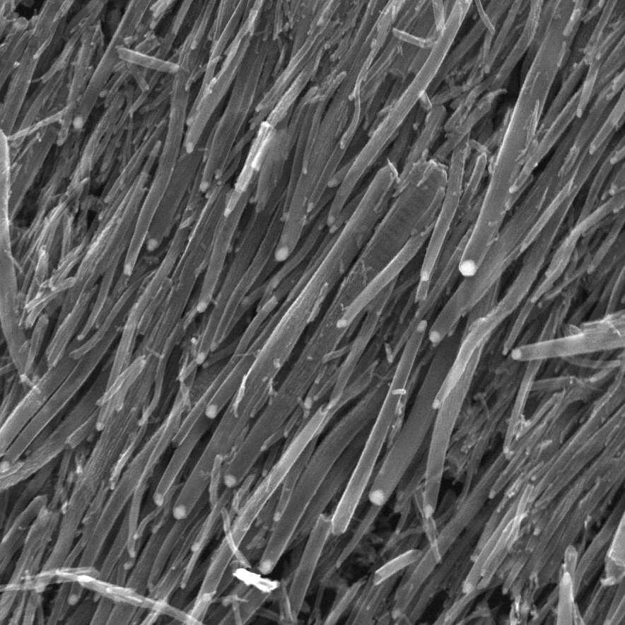Durs comme l'acier, légers, dix fois moins énergivores que le silicium et 70 fois plus conducteurs que ce dernier, les nanotubes de carbone forment un matériau « magique » qui pourrait remplacer le silicium. Mais les chercheurs ne parviennent pas à en créer de manière à ce qu'ils soient semi-conducteurs à 100 %. De plus, comme le montre cette illustration, ces matériaux aggravent leur cas avec leur forme particulière. © St Stev, Flickr, cc by nc nd 2.0