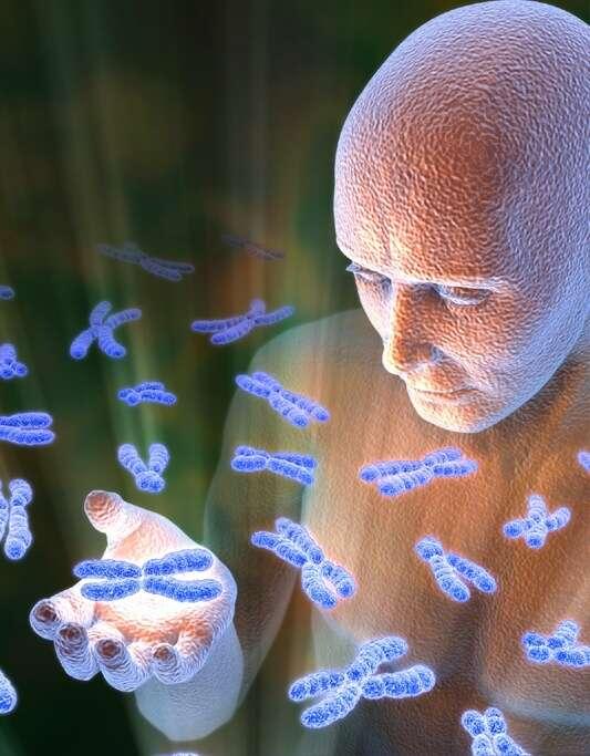 La biologie détient-elle les secrets de l'immortalité ? Sans doute le saurons nous pendant le XXIe siècle mais quand exactement ? © Jeff Johnson, Biological & Medical Visuals
