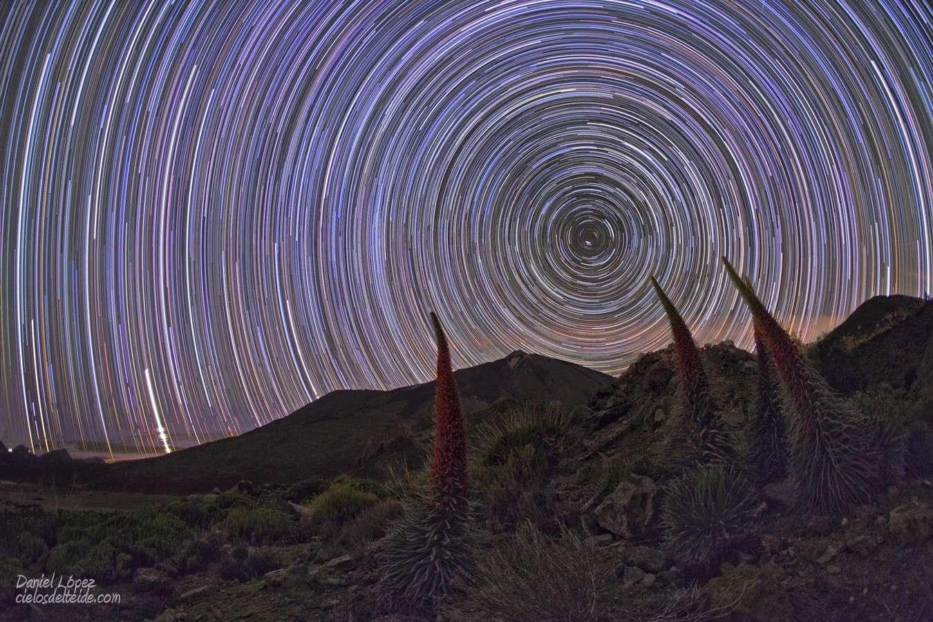 Rotation d'étoiles autour du pôle céleste depuis le sommet de l'île de Ténérife. © Daniel Lopez