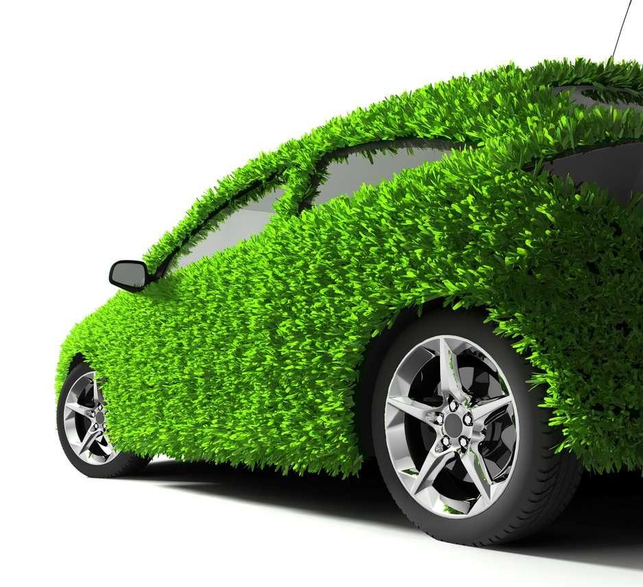 Ailleurs, la voiture est plus verte. © Anton Balazh, shutterstock.com