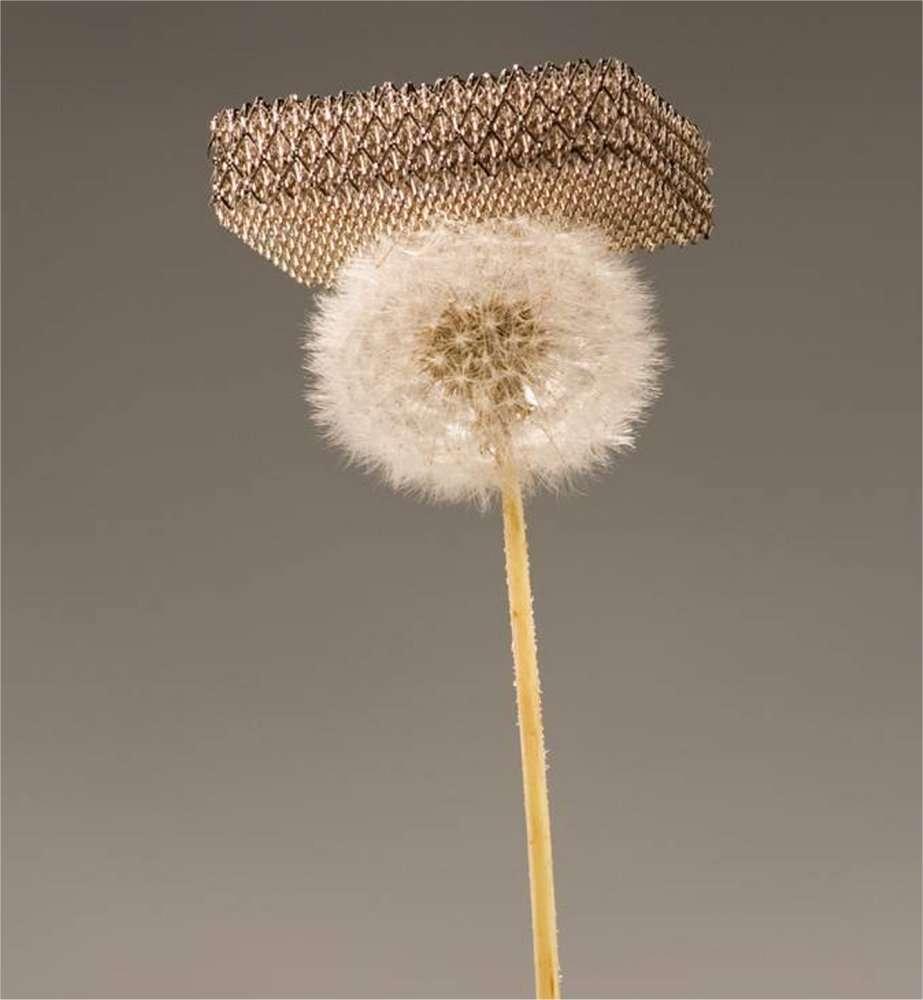 Une image étonnante réalisée sans trucage : un morceau de métal porté par une fleur de pissenlit. © Dan Little, HRL Laboratories LLC