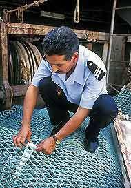 L'examen des livres de bord et l'inspection du matériel de pêche et des prises révèlent souvent si un bateau s'est livré à la pêche illégale. Crédits : FAO