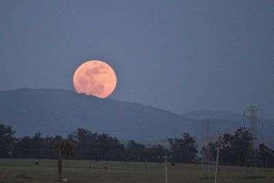 Le 10/08/2014 : la Lune sera pleine et elle sera aussi la plus grande de l'année. © Futura-Sciences