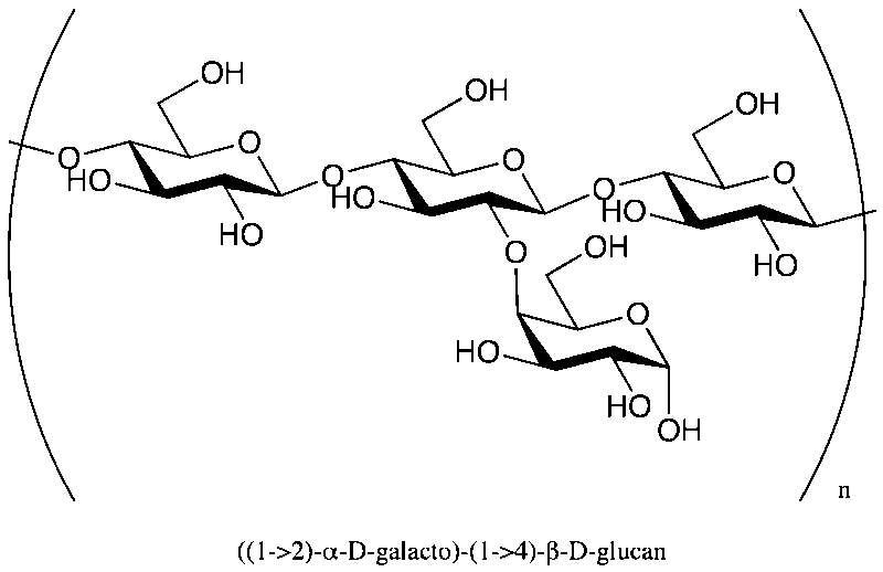 Une chaîne polyosidique. © CCostell, Wikimédia domaine public