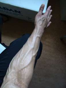 La supination est un mouvement de rotation de l'avant-bras. © Taleb247, Flickr, domaine public