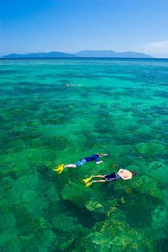 Pourtant, les hommes semblent aimer les coraux... © Amit (Sydney) / Flickr - Licence Creative Common (by-nc-sa 2.0)