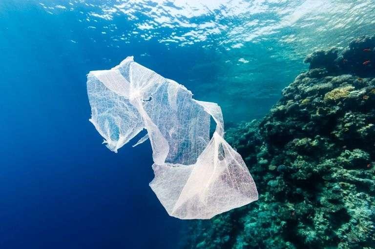 La « grande plaque d'ordures du Pacifique » s'étendrait sur 3,43 millions de km2 (cinq fois la surface de la France) avec une épaisseur maximale de 30 m. Elle abriterait 3,5 millions de tonnes de plastiques. © Richard Whitcombe, shutterstock.com