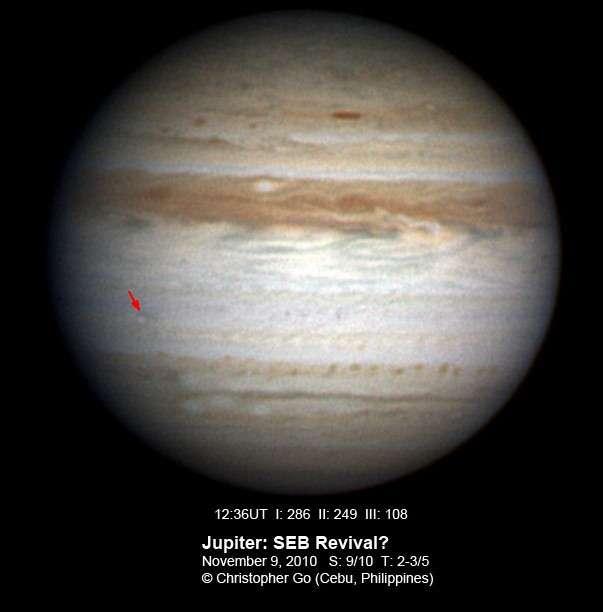 Premier signe de la prochaine réapparition de la bande équatoriale sud de Jupiter, un spot brillant est apparu sur la SEB le 9 novembre. © Christopher Go