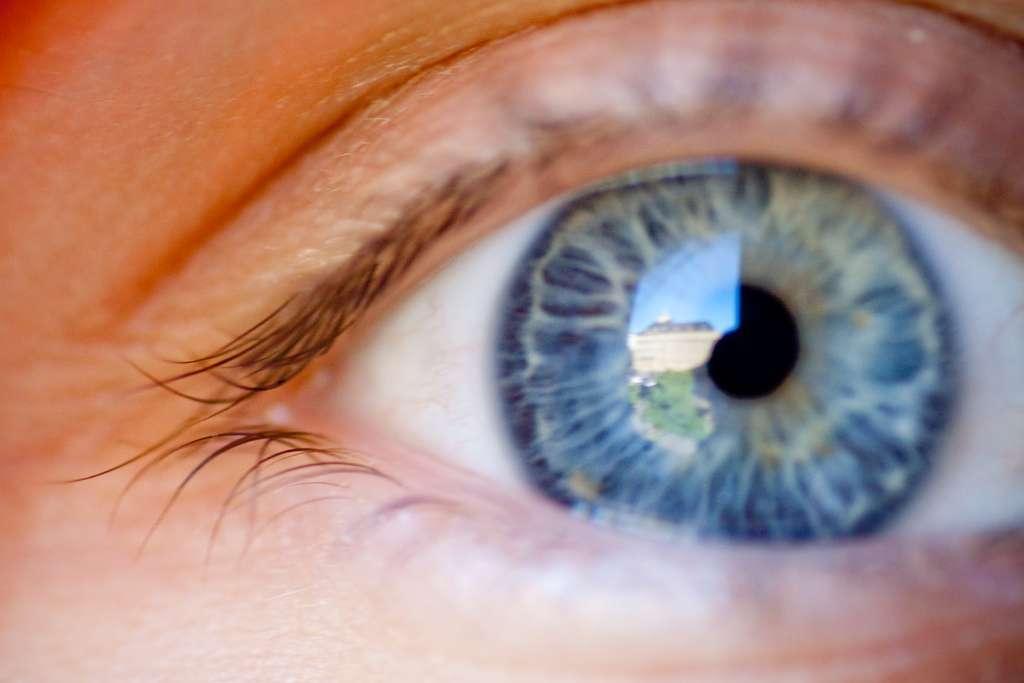 Une nouvelle couche composant la cornée humaine vient d'être découverte. Solide et résistante, elle pourrait avoir des applications intéressantes en médecine humaine. © Laurence Vagner, Flickr, cc by nc sa 2.0