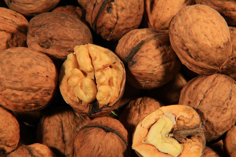 La consommation quotidienne et sans excès de noix contribuerait à faire baisser le taux de cholestérol et à doper les effets d'un bon régime alimentaire. © JKlingebiel, shutterstock.com