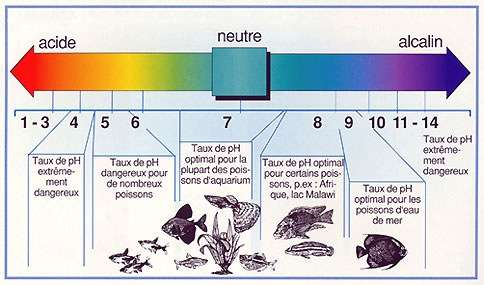 Taux de pH de l'eau, de l'eau acide à alcaline. © aquatic-garden.be