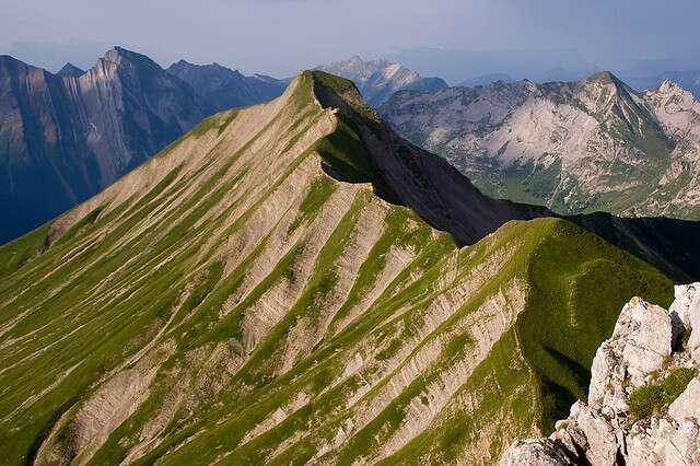 En Europe, quatre sommets culminent à plus de 5.000 m (tous dans le Caucase) et leur flore est menacée par le réchauffement climatique. © mll, Flickr, cc by nc 2.0