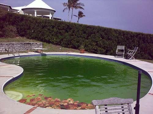 Choisir une piscine en coque polyester est une décision qui dépend de plusieurs critères. © Andrew Currie, staticFlickr, cc by 2.0