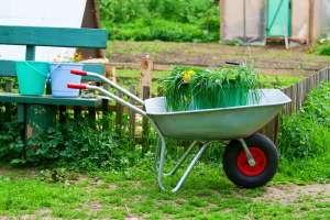 Le milieu non agricole n'utilise que 5% des pesticides, mais il respecte beaucoup moins les doses recommandées. © Dushenina
