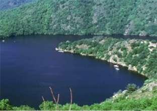 Certains bassins et fleuves sont contaminés par le mercure, qui pollue alors les poissons qui y vivent. Une chimiokine pourrait protéger le cerveau des effets toxiques du mercure. © Phovoir