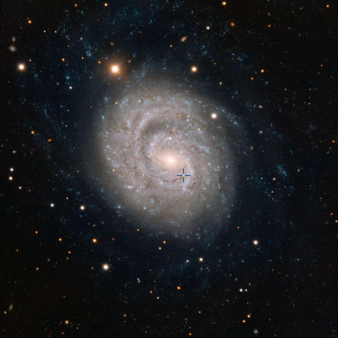 Cette image acquise par le Very Large Telescope de l'ESO à l'observatoire de Paranal au Chili montre NGC 1637, une galaxie spirale située à environ 35 millions d'années-lumière dans la constellation de l'Éridan (la Rivière). En 1999, les scientifiques ont découvert une supernova de type II dans cette galaxie, et ont suivi son lent déclin en luminosité au fil des années. La position de la supernova est précisée par la croix bleue. © ESO