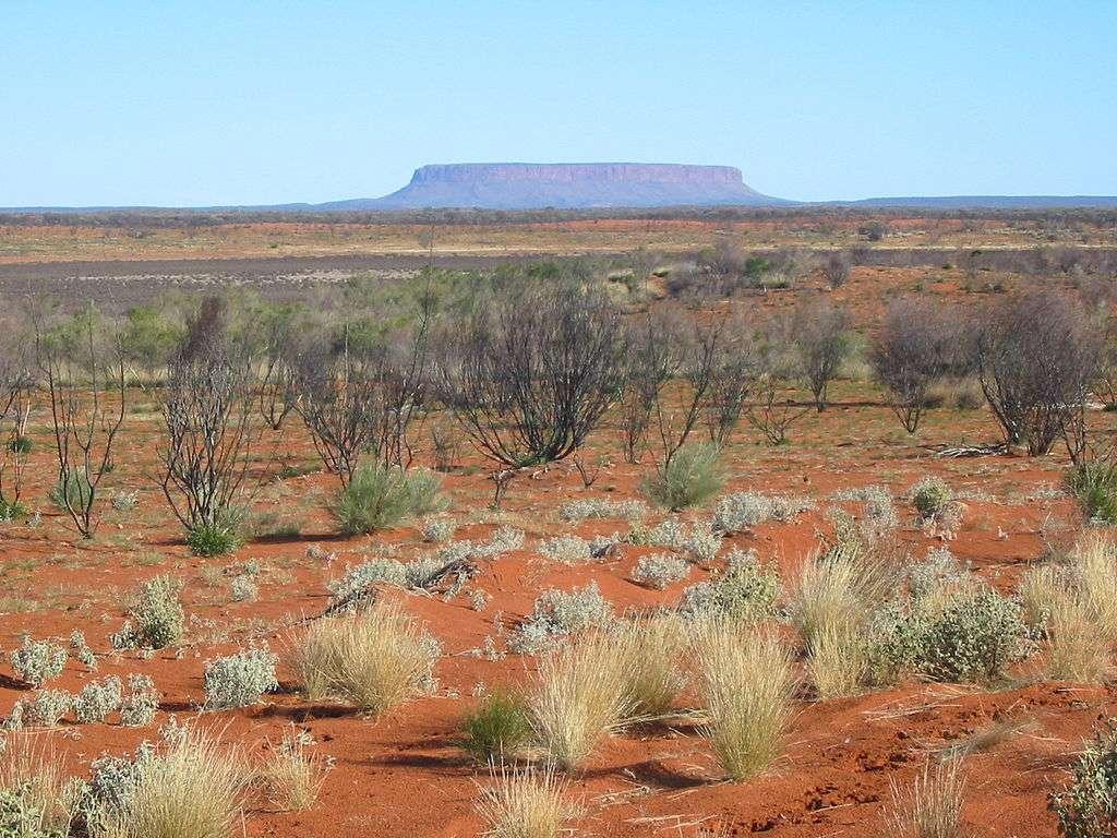 L'outback en Australie est la région centrale. Elle est semi-aride et couvre l'équivalent des deux tiers de l'Europe. Cette zone a subi de fortes précipitations en 2011, suite à l'événement La Niña. © Gabriele Delhey, Wikipédia, GNU 1.2