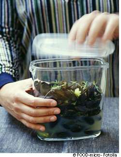 Les aliments doivent être conservés avec précaution pour éviter les intoxications alimentaires. © FOOD-micro, Fotolia