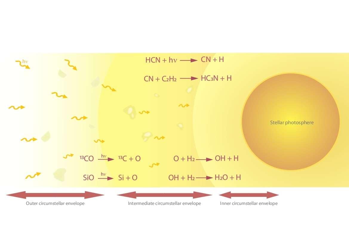 Illustration montrant les réactions chimiques provoquées par l'action du rayonnement UV interstellaire sur les molécules présentes dans l'environnement de CW Leonis. De telles réactions expliqueraient comment se forme la vapeur d'eau observée à proximité de l'étoile. Crédit L. Decin et al.