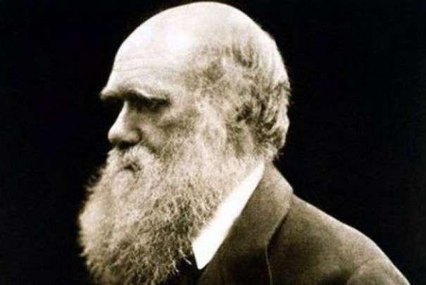 L'évolution mène-t-elle toujours aux mêmes phénomènes et au même résultat ? Qu'en aurait pensé Darwin ? © Julia Margaret Cameron