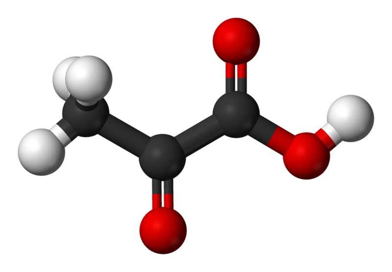 Le pyruvate est la forme ionisée de l'acide pyruvique. © Benjah-bmm27, Wikimedia, domaine public