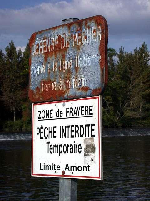 Panneau marquant la limite amont d'une réserve de pêche instituée pour protéger une frayère. © Harald Walker CC by-nc 2.0