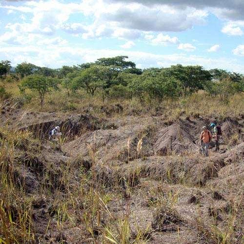 Des recherches effectuées dans des terrains difficiles d'accès (ici le sud-ouest de la Tanzanie) ont mis au jour de nouveaux reptiles et amphibiens fossiles, qui livrent de nouvelles informations sur la grande crise de la vie qui s'est produite avant l'apparition des dinosaures. © J.S. Steyer, Museum national d'histoire naturelle