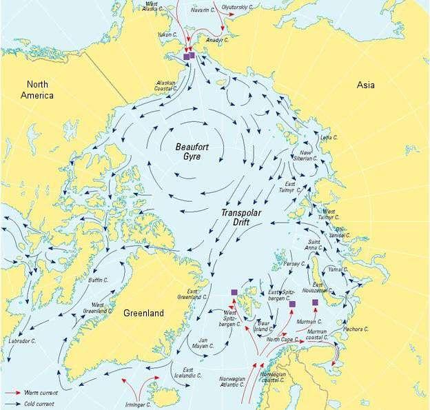 La gyre de Beaufort s'observe en Arctique (Beaufort Gyre en anglais). Le terme « gyre » fait référence à un tourbillon d'eau observable à l'échelle d'un bassin océanique complet. © NSIDC