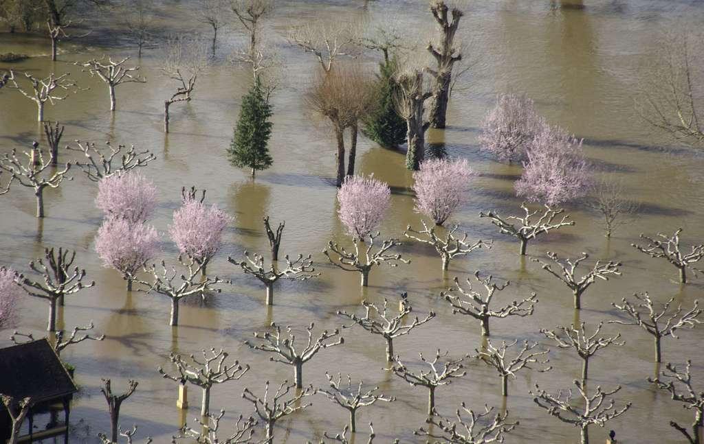 Les rivières atmosphériques sont responsables de la formation des tempêtes extratropicales qui peuvent provoquer de gigantesques crues aux moyennes latitudes. © funnigan67, Flickr, by nc sa 2.0